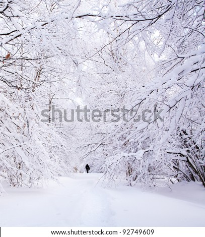 Path in a winter deep forest - trees covered with snow and a man walking in distance - stock photo