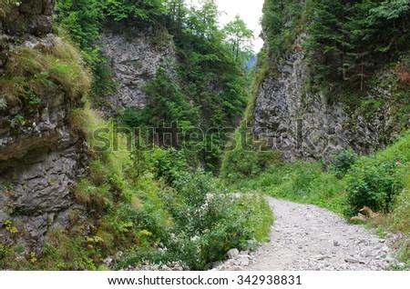 Path in Homole Gorge, Pieniny Mountains - Poland - stock photo
