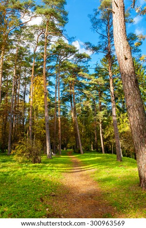 Path in Oru Park. Toila, Ida-Viru County, Estonia, Europe - stock photo