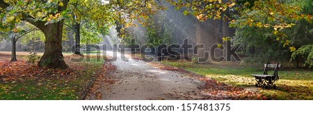 Path in the autumn park. Autumn Landscape. Park in Autumn. Panorama. - stock photo