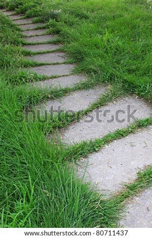 path in the lawn in a park, close up of pictures