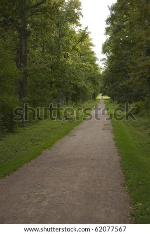 Path in the park Alexandria, Peterhof, Russia