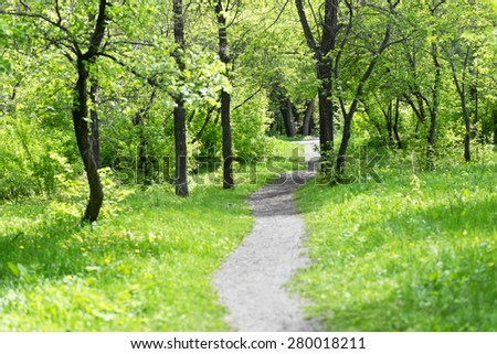 path in the spring park - stock photo