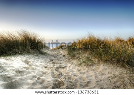 Path leading through sand dunes to the beach at Sandbanks in Poole, Dorset - stock photo