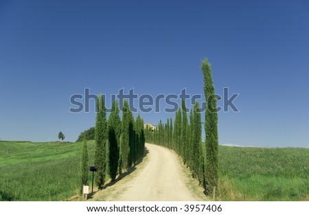Path leas to a beautiful house in Chianti, tuscany.