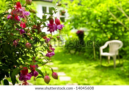 Path of stepping stones leading to a house in lush green garden - stock photo