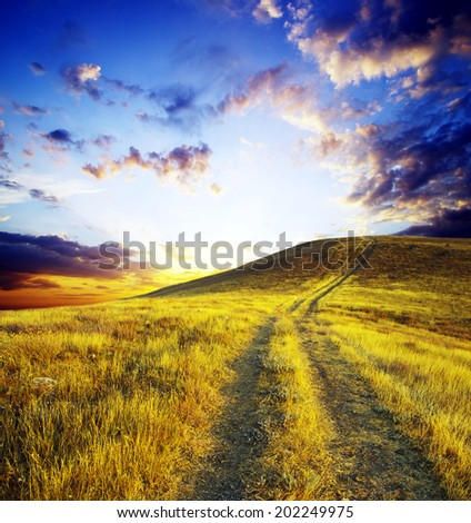 path on mountain meadow in nice day
