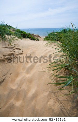 Path on sand dune down to the beach and ocean - stock photo