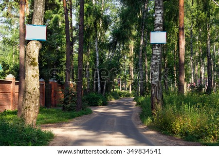 path on the asphalt road through the green pine-trees and two labels on front trees - stock photo