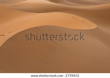 Path on the dunes of the Sahara desert - stock photo
