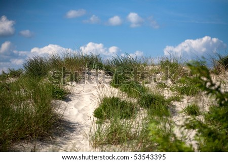 path on the dunes with sunny sky - stock photo