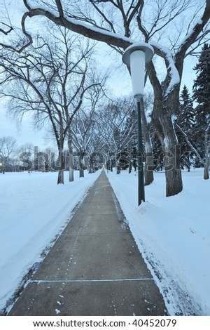 Path on winter snow field in a park, edmonton, alberta, canada