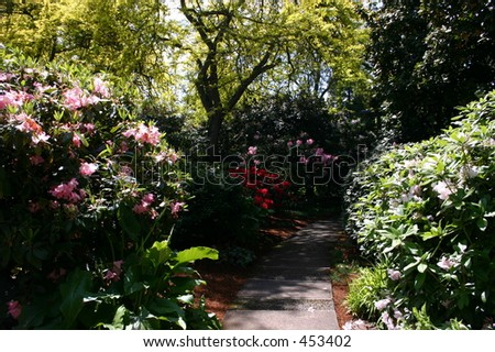 Path Through A Garden