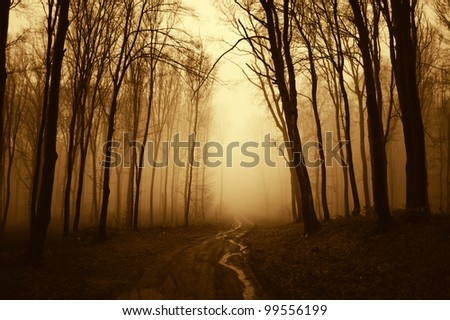 path through a golden forest with black trees - stock photo