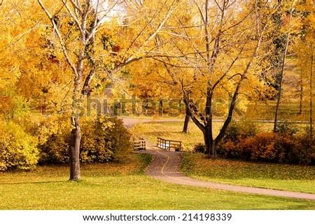 Path through a park with vibrant autumn colors - stock photo