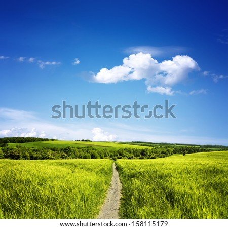 Path through the meadows - stock photo