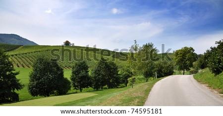 Path through the summer landscape. Skalce, Slovenia - stock photo