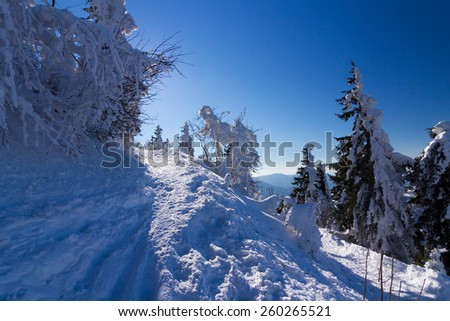 Path through winter mountain landscape along Lysa hora in Beskydy mountains - stock photo