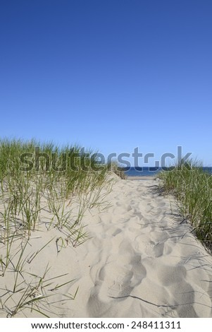 Path to Beach on Sunny Day - stock photo