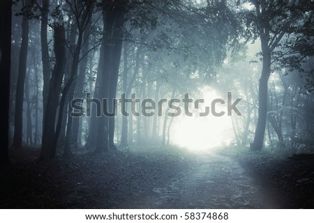 Path to light through a dark cold forest at night - stock photo