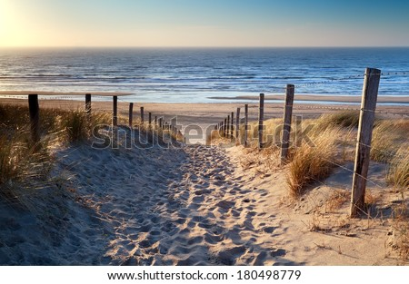 path to North sea beach in gold sunset sunshine, North Holland, Netherlands - stock photo