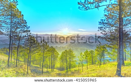 Path to sun rays a pine forest with long sun rays pass through valley with pines yellow sunny mornings this place more lively, warm and tranquil welcome to beautiful new day - stock photo