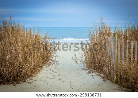 Path To The Beach. Path to the wide sandy beaches of the Atlantic. Myrtle Beach, South Carolina. - stock photo
