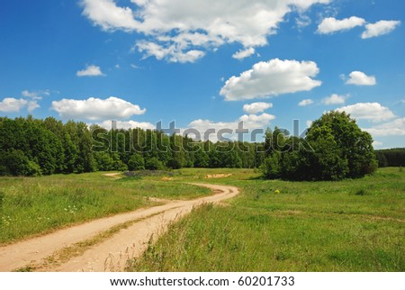 Path to the forest - stock photo