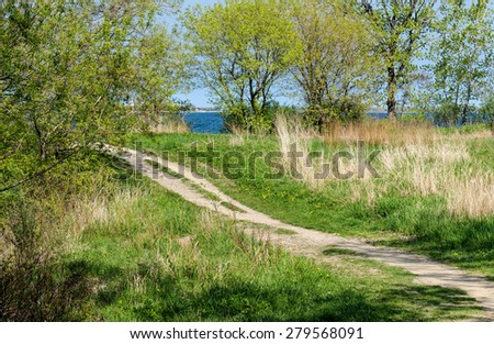 Path to the lake - stock photo