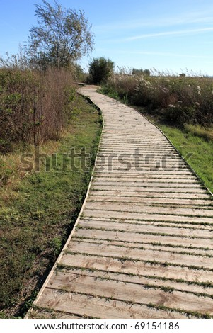 Path, Ullal de Baldovi wetland  in La Albufera nature reserve, Valencia province, Spain - stock photo