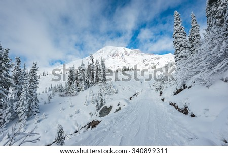 path with river cover with snow in paradise area,scenic view of mt Rainier National park,Washington,USA. - stock photo