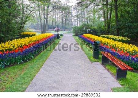 Path with spring flowers in the early morning in the park - stock photo