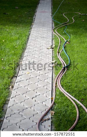 paths in the garden  - stock photo
