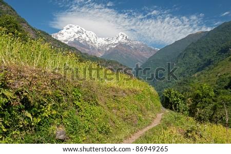 Paths to Annapurna, Nepal - stock photo
