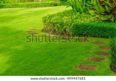 Pathway In Garden With A Freshly Mowed Lawn, Green Garden, Landscaping In  The Garden