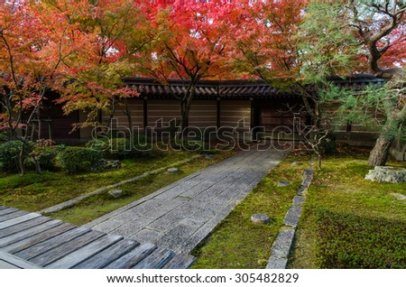 Pathway in japanese style garden