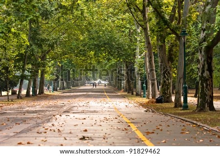 pathway in the park at spring - stock photo
