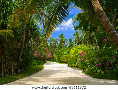 Pathway in tropical park - abstract travel background - stock photo