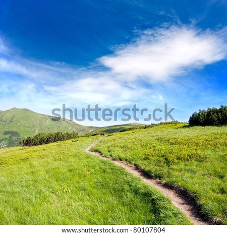 pathway on green ridge in mountains