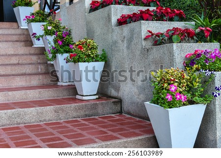 pathway stairs and beautiful flowers decorations - stock photo
