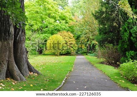 Pathway through a Beautiful Green Park - stock photo