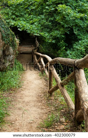 Pathway through dense forest and wooden fence in Crete - stock photo
