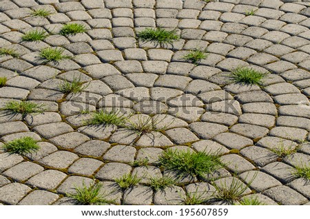 Patio bricks arranged in a circular pattern - stock photo