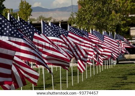 Patriotic flag display . - stock photo