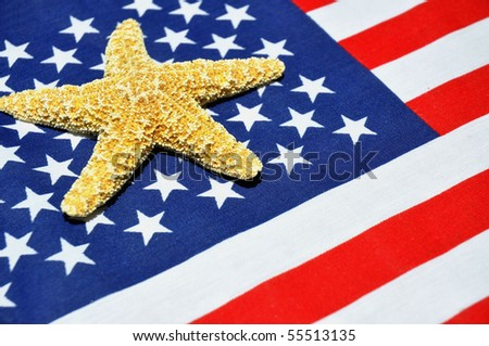 Patriotic Summertime concept. Starfish on flag background - stock photo