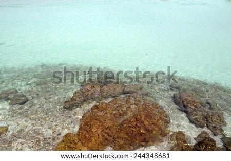 Pattaya the fine vacation spot at any time years, warm sea - stock photo