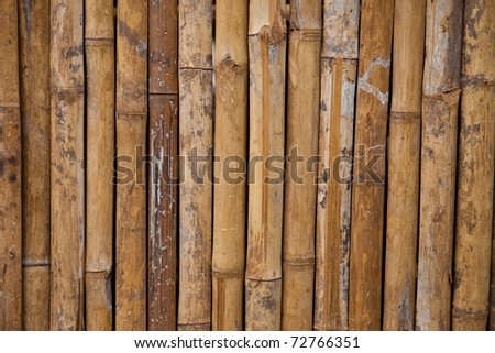 Pattern of a bamboo walll, for your own background. - stock photo