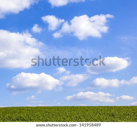 pattern of green field with blue cloudy sky - stock photo