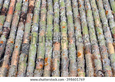 Pattern of old clay tiles on a roof in Tuscany, Italy - stock photo