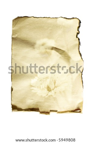 pattern of old paper on white isolated